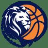 تاریخچه بسکتبال جهان